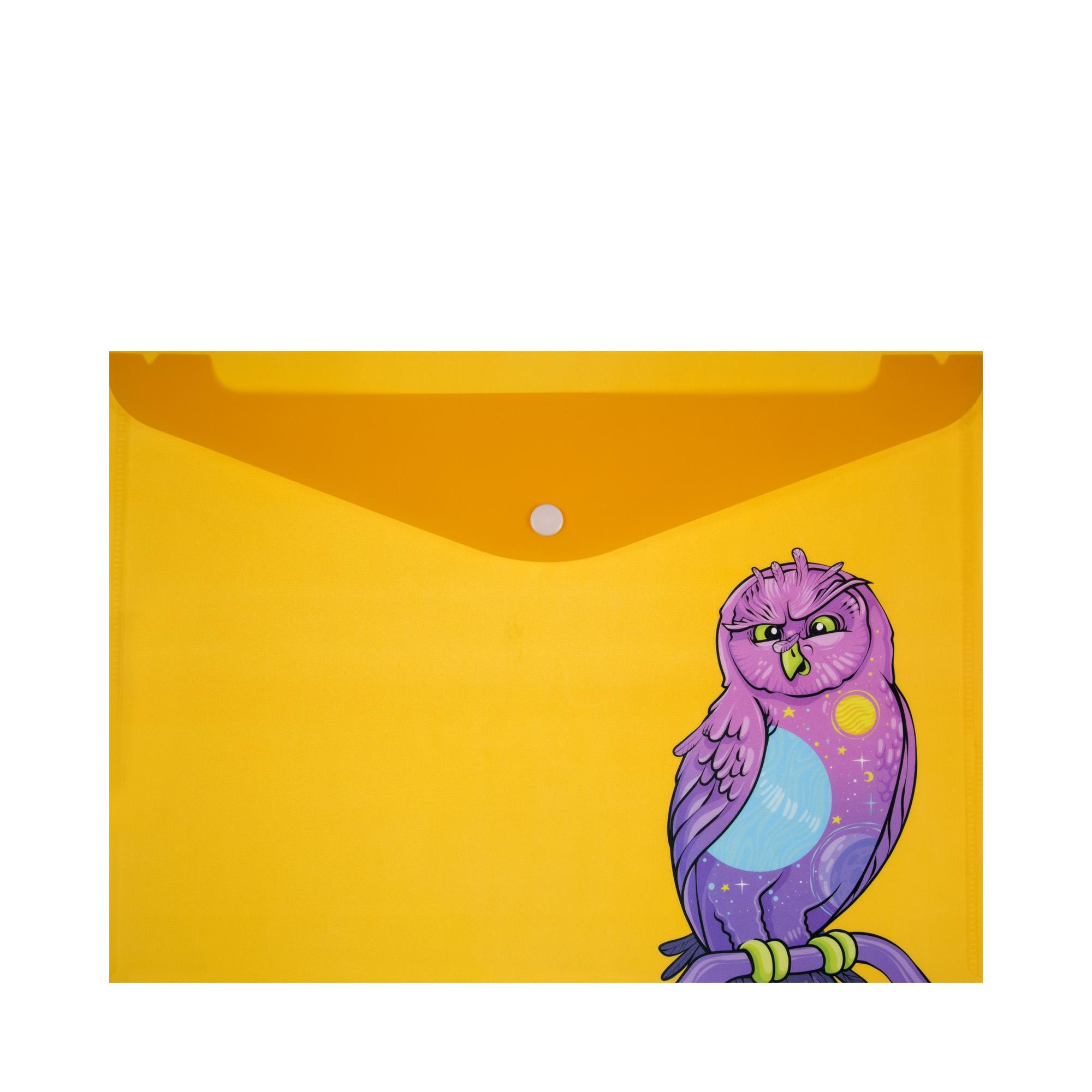 Папка для документов шкаф для документов акцент